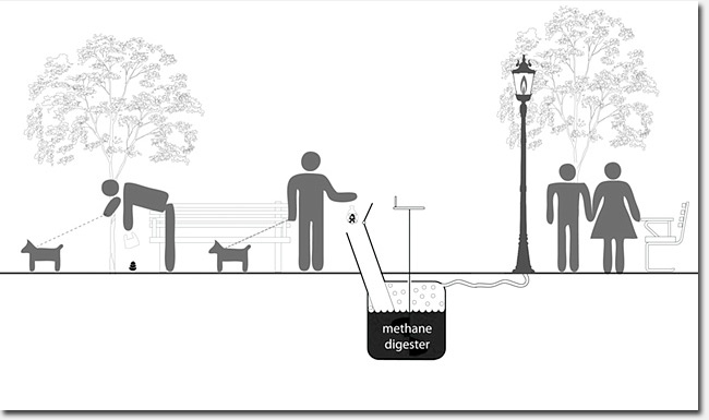 Dog Poop Powered Lights A Good Idea For Our Parks