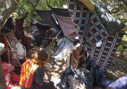 A homeless encampment in Sutro Park