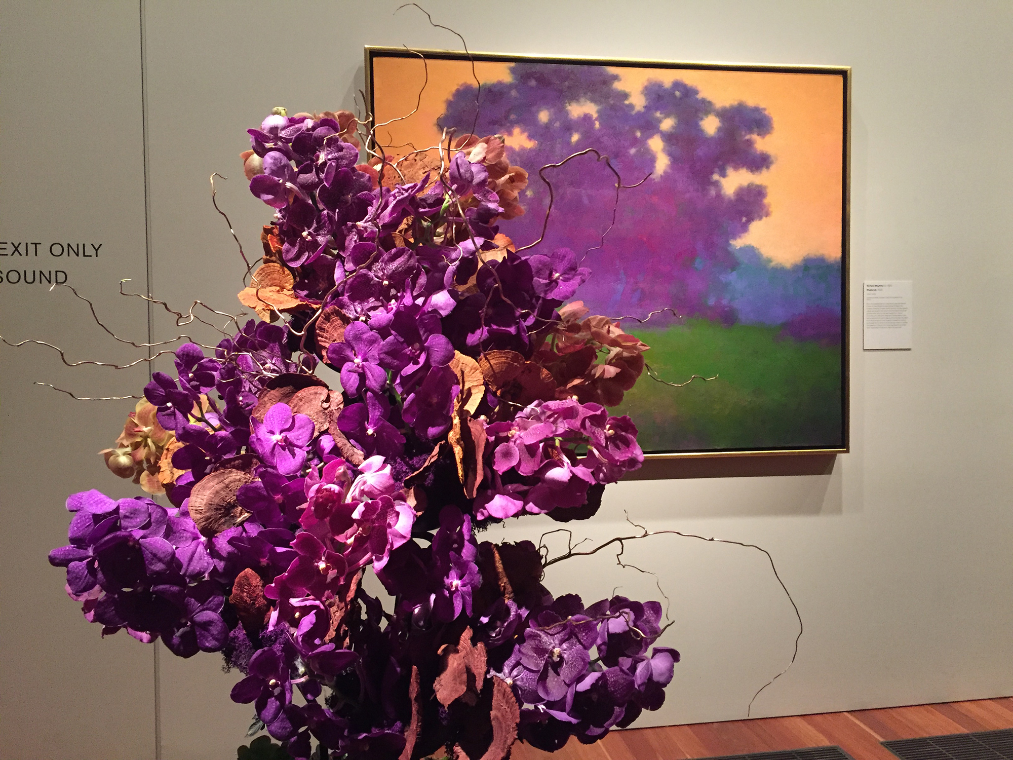 Art Car Museum >> Stop to smell the flowers: de Young blooms with 33rd ...